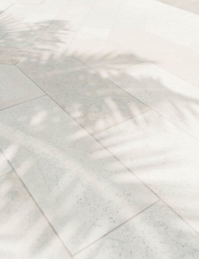 Palm tree shadows - photo by Moyo Studio. Taken from the Website of Wildflower Pinterest Management Service